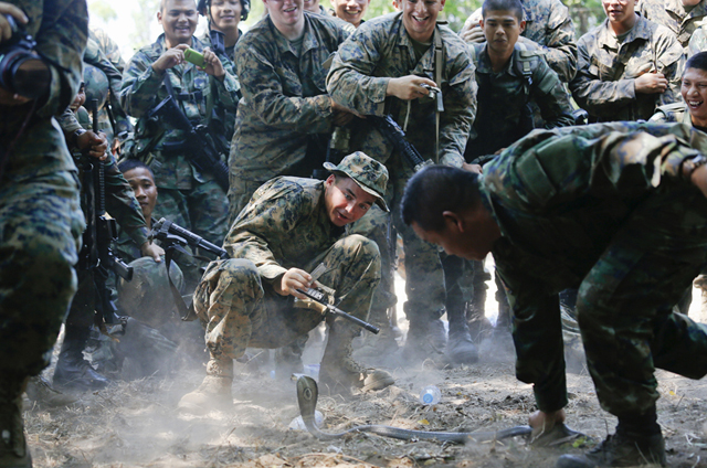 U.S. marines react as a cobra gets too close to them during a jungle survival exercise at a military base in Chon Buri province