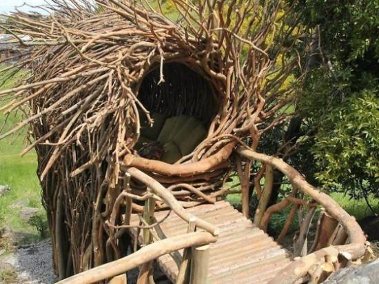 human-nest2-550x412