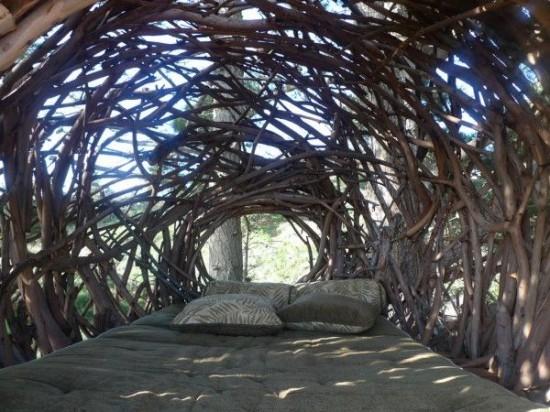 human-nest5-550x412