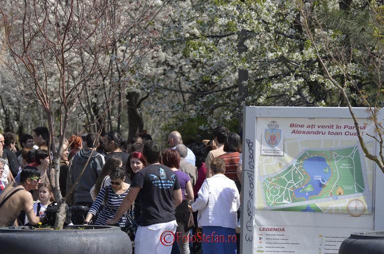 protest-parc-IOR_3