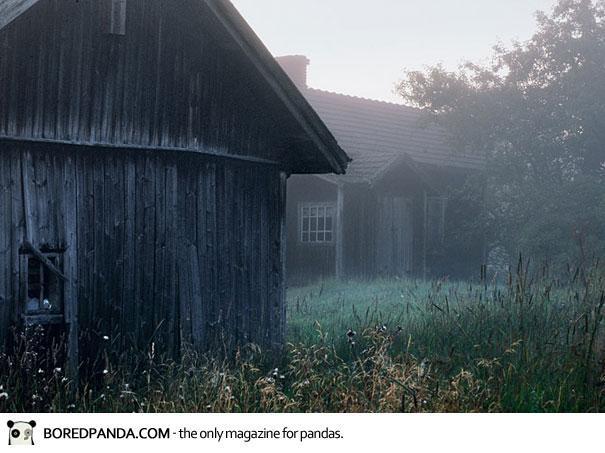 abandoned-house-animals-kai-fagerstrom-22
