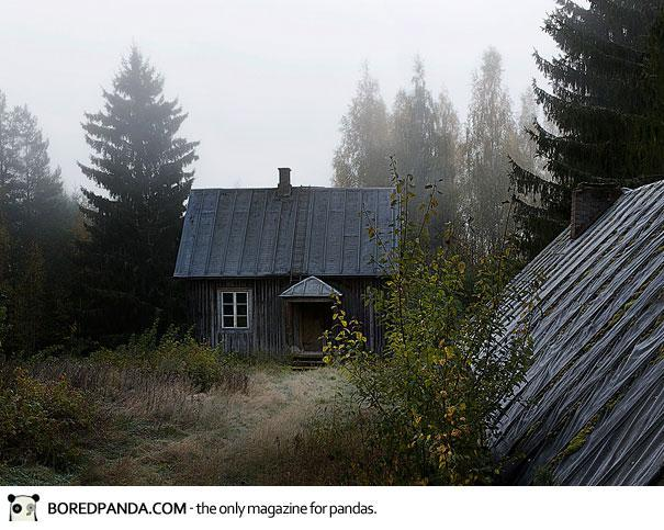 abandoned-house-animals-kai-fagerstrom-23