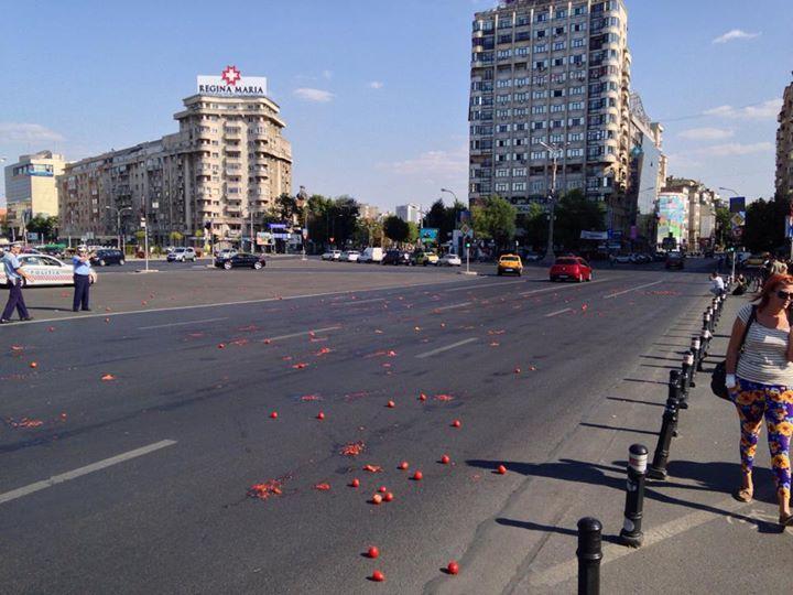 stire 8 sept protest rosii 4