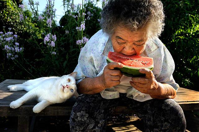 grandmother-and-cat-miyoko-ihara-fukumaru-3
