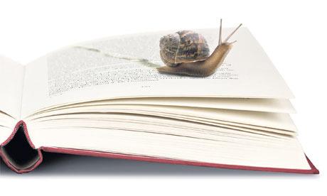 slow-reading-006