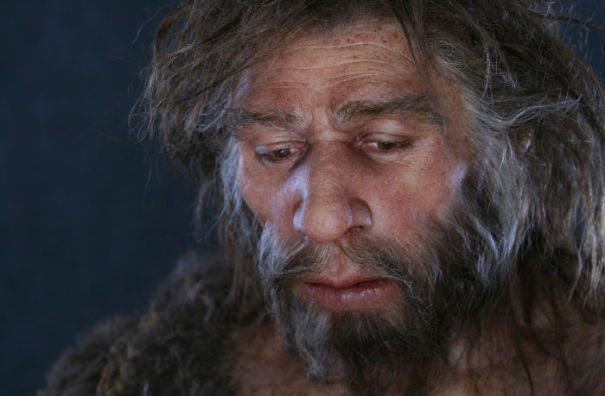 Amazingly-realistic-reconstructions-of-our-ancectors-shows-human-evolution11__605