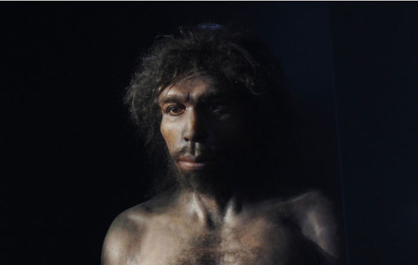 Amazingly-realistic-reconstructions-of-our-ancectors-shows-human-evolution14__605