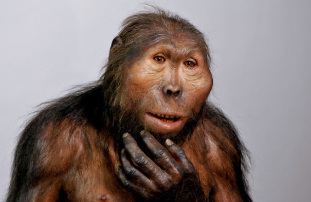 Amazingly-realistic-reconstructions-of-our-ancectors-shows-human-evolution15__605