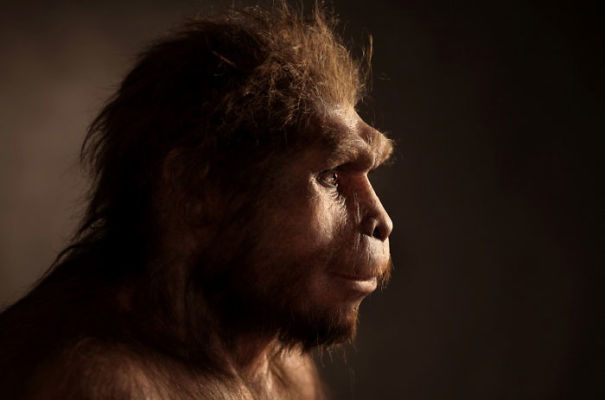Amazingly-realistic-reconstructions-of-our-ancectors-shows-human-evolution4__605