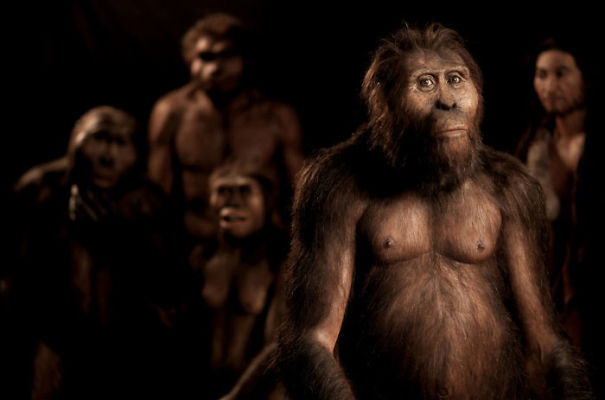 Amazingly-realistic-reconstructions-of-our-ancectors-shows-human-evolution6__605