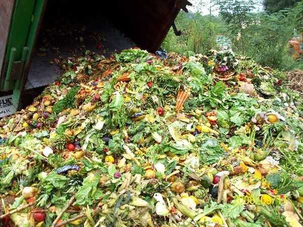 massachusetts_proposes_turning_food_waste_into_electricity_psqfk