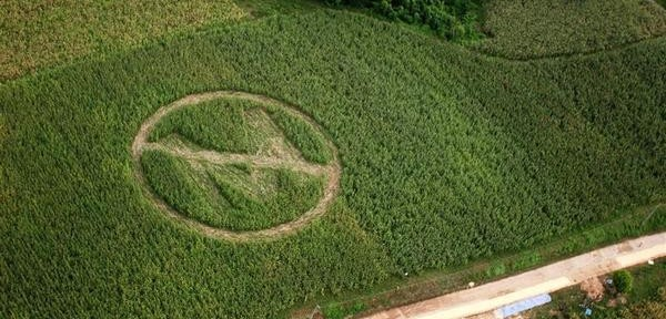 MonsantoCropCircle-600x288