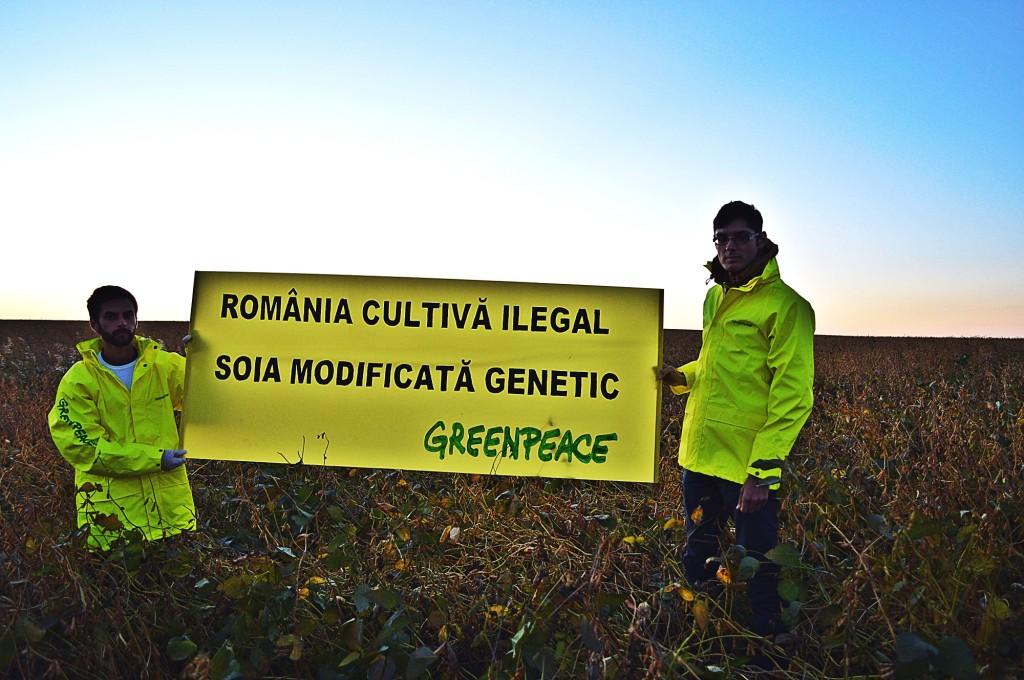 Greenpeace_soia_1_res