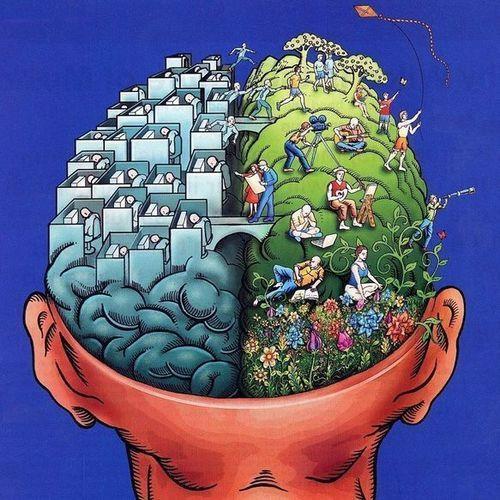 w500h500_33072-split-brain-theory-for-marketing