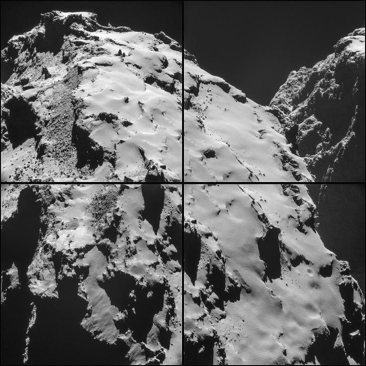 stire 14 nov cometa 11