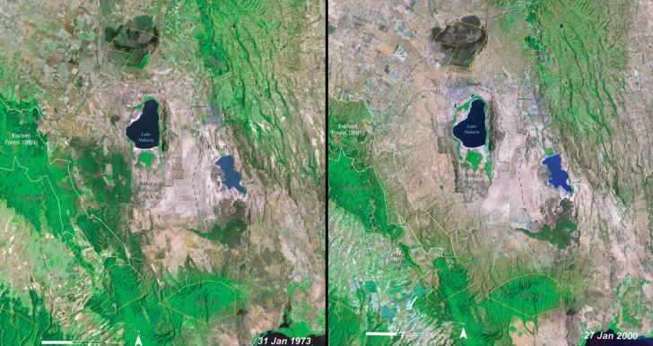 Deforestation-Kenya-e1421349098326