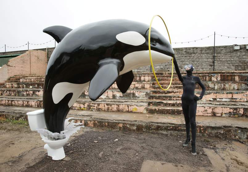 Image #: 38872357    A killer whale jumping out of a toilet piece by Banksy, during the press view for the artistâ??s biggest show to date, entitled 'Dismaland', at Tropicana in Western-super-Mare, Somerset.       PA PHOTOS /LANDOV