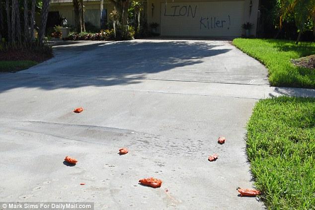 În fața casei de vacanță a lui Walter Palmer, protestatarii au presărat picioare de porc. Foto: Daily Mail