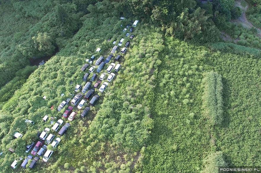 Maşinile abandonate dispar în vegetaţie, pe o bucată de drum din apropierea centralei nucleare