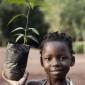 Africanii se apără de schimbările climatice plantând copaci