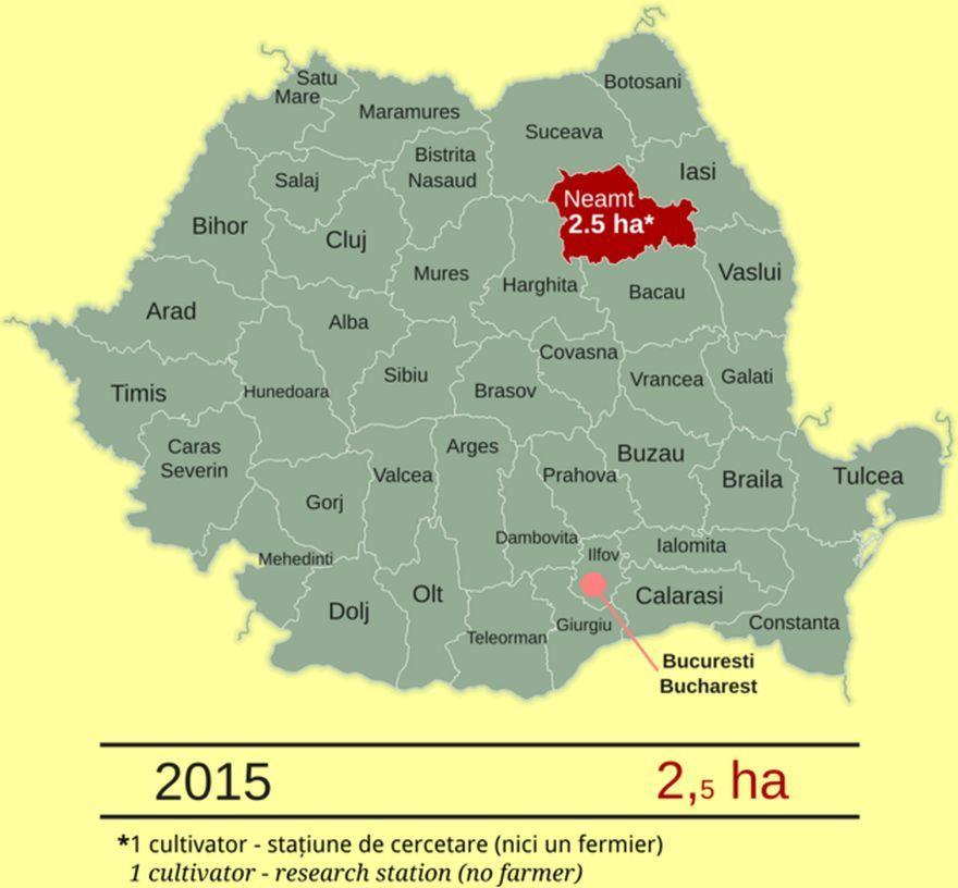 Harta României indicând județul Neamț, în care au fost cultivate 2,5 hectare de porumb MG MON810. Sursa: Centrul de Informare asupra Organismelor Modifcate Genetic InfOMG, bazat pe date provenind de la Agenția Națională pentru Protecția Mediului