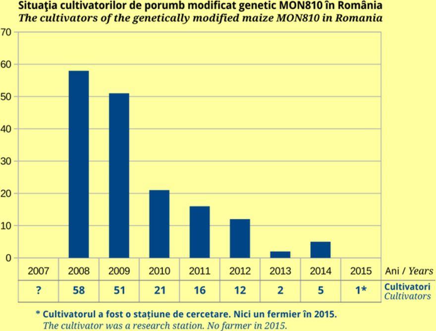 Grafic ce indică descreșterea dramatică a numărului de cultivatori de OMG – culturi comerciale. Sursa: Centrul de Informare asupra Organismelor Modifcate Genetic InfOMG, bazat pe date provenind de la Agenția Națională pentru Protecția Mediului