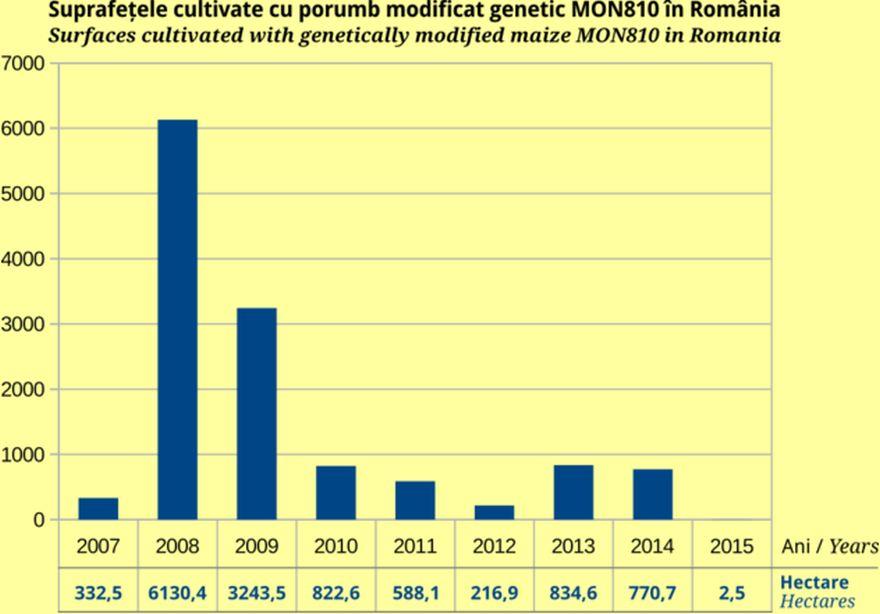 Grafic ce indică declinul suprafețelor cultivate cu OMG – culturi comerciale. Sursa: Centrul de Informare asupra Organismelor Modifcate Genetic InfOMG, bazat pe date provenind de la Agenția Națională pentru Protecția Mediului