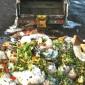 Proiect de studiere a risipei alimentare din România