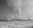 Foto Mircea Topoleanu Greenpeace Romania