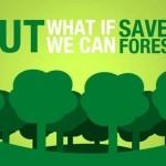 Inspectorul Pădurii, aplicația care salvează pădurile