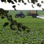 Lista neagră a pesticidelor din UE: 209 dintre acestea pot ..