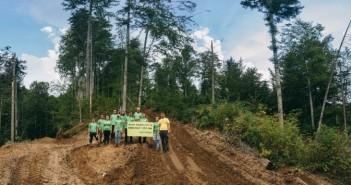 Voluntari Greenpeace într-o pădure – în Munții Făgăraș – © Cristi Grecu