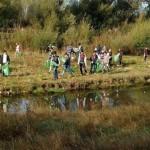 Let's Do It, Romania: Zeci de mii de voluntari au ..