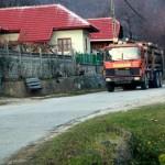 Peste 1.000 de metri cubi de lemn confiscați și amenzi ..