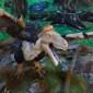 Țara Hațegului, locul unde ultimele ouă de dinozaur au fost ..