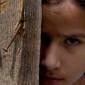 Familia cecenă, o poveste despre rezistența prin credință